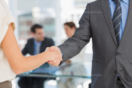 Mid section of handshake to seal a deal after meeting FYI00000011
