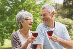 Senior couple toasting wine glasses at park FYI00000151
