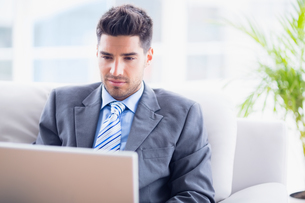 Young businessman sitting on couch using his laptop FYI00000911