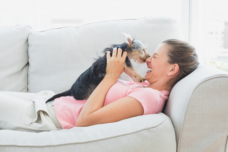 Happy woman playing with her yorkshire terrier on the couch FYI00001076