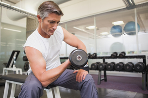 Fit man lifting dumbbells sitting on the bench FYI00003318