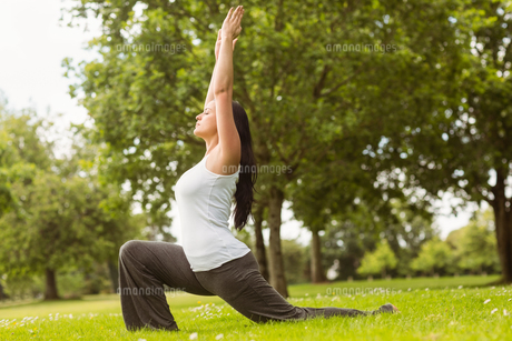 Brunette in warrior pose on grass FYI00003810