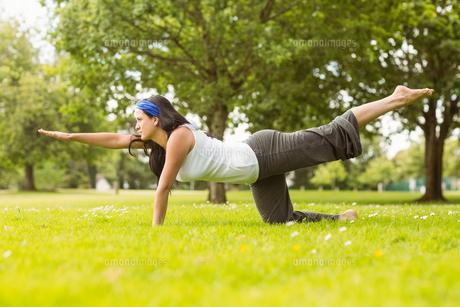 Brunette in balance pose on grass FYI00003816