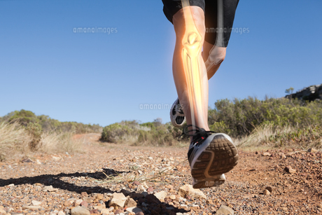 Highlighted leg bones of jogging man FYI00006272