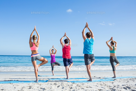 Friends doing yoga together with their teacher FYI00006866