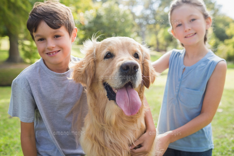 Smiling sibling with their dog in the park FYI00007179