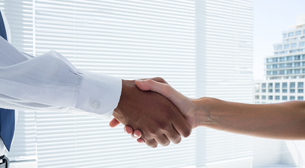 Close up view of two business people shaking hands FYI00008349