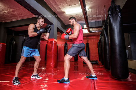 Two boxing men exercising together FYI00009088