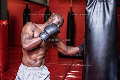 Young Bodybuilder boxing a bag FYI00009342