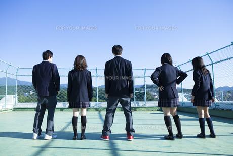 屋上に立つ高校生たち FYI00024477