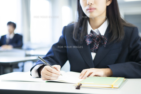 授業を受ける高校生たちの素材 [FYI00024489]