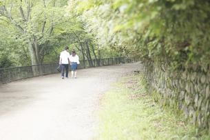 手をつなぎ道を歩くカップル FYI00025002
