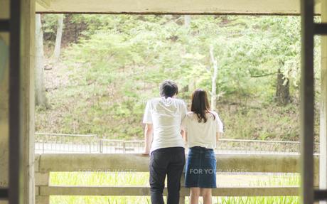 身を寄せ合い風景を眺めるカップル(後ろ姿) FYI00025009
