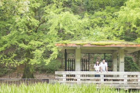 身を寄せ合い風景を眺めるカップル(正面) FYI00025010