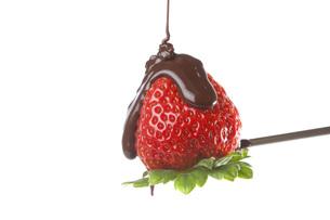 イチゴチョコレート FYI00025365