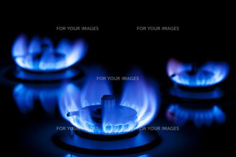 ガスの炎 FYI00025414