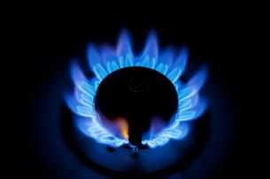 ガスの炎 FYI00025415