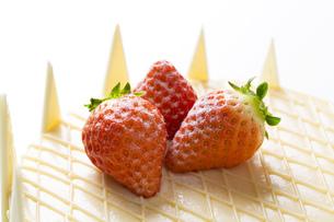 ホワイトデーケーキ FYI00025962