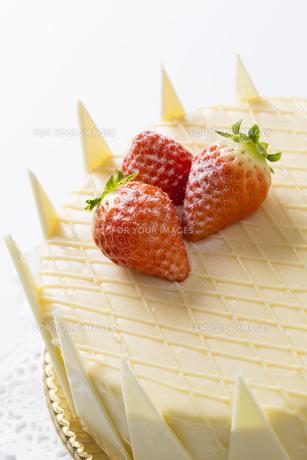 ホワイトデーケーキ FYI00026036