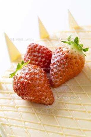 ホワイトデーケーキ FYI00026038