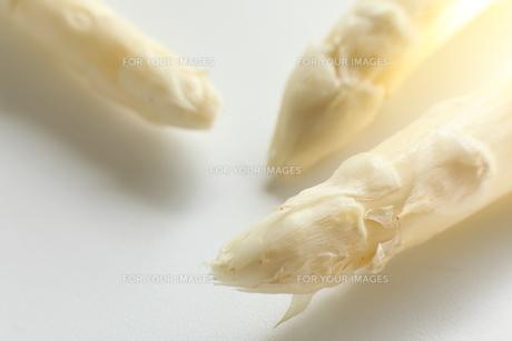 ホワイトアスパラガス FYI00027619