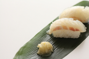 鯛のお寿司 FYI00028599