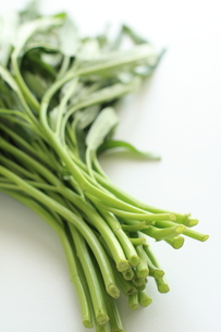 アジア食材のクウシンサイ空芯菜 FYI00029701