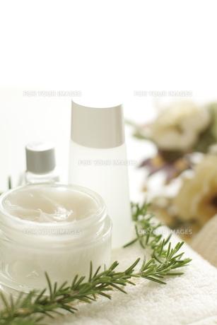 基礎化粧品とハーブのスパイメージ FYI00029911