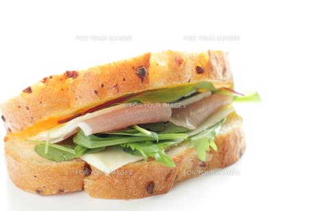 サンドイッチ FYI00030111