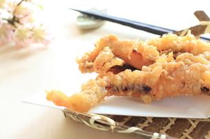 蛸足の天ぷら FYI00030809