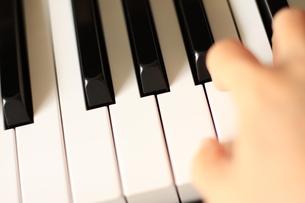 手と鍵盤 FYI00031907