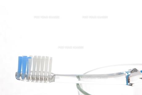 歯ブラシ FYI00033151
