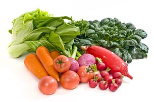 野菜 FYI00037406