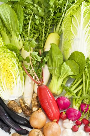 野菜 FYI00037418