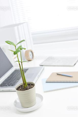 オフィスデスクとビジネスアイテム FYI00040472