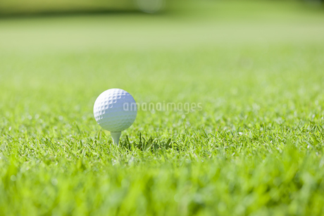 ゴルフボール FYI00041376
