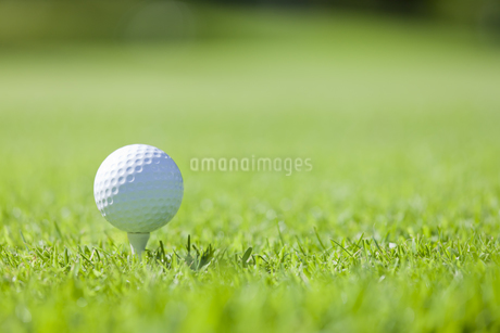 ゴルフボール FYI00041388