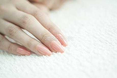 女性の手 FYI00041589