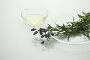 ラベンダーの花とアロマオイル FYI00041638