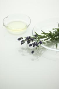 ラベンダーの花とアロマオイル FYI00041639