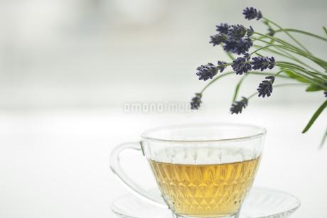 ラベンダーの花とハーブティー FYI00041640