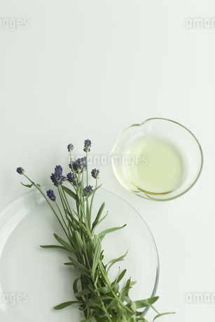 ラベンダーの花とアロマオイル FYI00041646