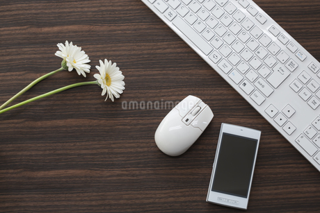 オフィスデスク FYI00042045