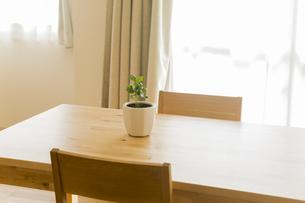 テーブルの上にある観葉植物 FYI00042652