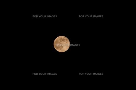 満月 FYI00043025