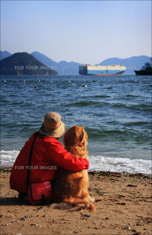 犬と海 FYI00043088
