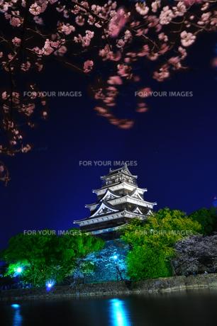 広島城の夜桜 FYI00043165