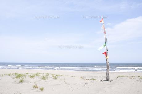 海辺のフラッグ FYI00044177