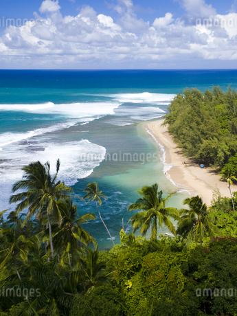 カウアイ島のケエビーチ FYI00044596