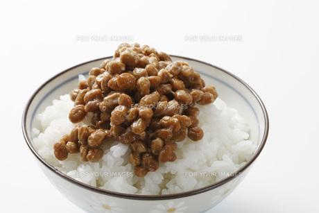 納豆ご飯 FYI00045590